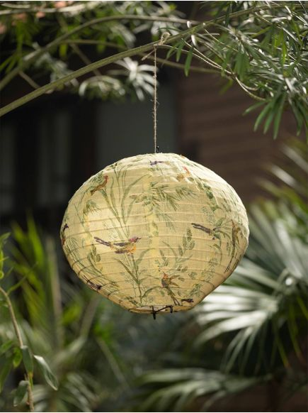 Bamboo Hanging Lamp : Assorted